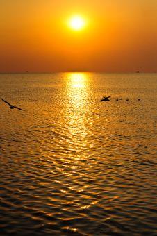 Free Magic Sunset Royalty Free Stock Photo - 14529295