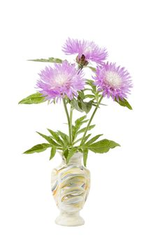 Free Centaurea Pulcherrima In Handmade Ceramic Vase Royalty Free Stock Images - 14529389