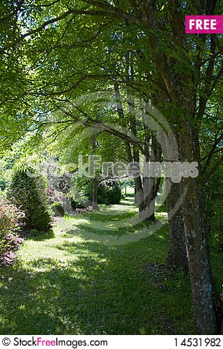 Free Green Field Stock Photography - 14531982