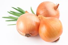 Free Fresh Bulbs Of Onion Stock Photos - 14531713