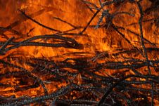Free Forest Fire Stock Photography - 14533332