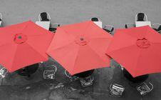 Free Umbrellas Stock Photos - 14534893