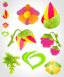 Free Vector Flowers And Fruits Illustration Royalty Free Stock Photos - 14535518
