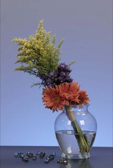 Free Flowers In A Vase Royalty Free Stock Photo - 14535845