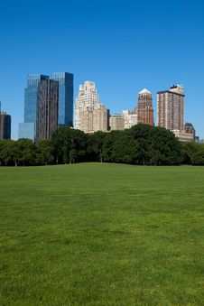 Free Sheep Meadow Stock Photography - 14536102