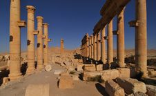 Free Palmyra Ruins And Columns Royalty Free Stock Images - 14537529