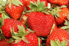 Free Strawberry Stock Images - 14538654