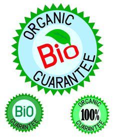 Organic& Bio Colorful Label Set Stock Images