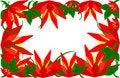 Free Flower Border Royalty Free Stock Image - 14547906
