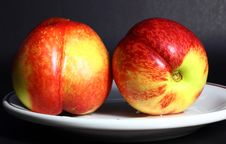 Free Two Nectarines Stock Image - 14543401