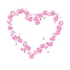 Free Oriental Cherry, Heart Royalty Free Stock Image - 14543506