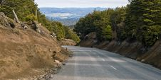 Free Road To Mt Ruapehu Stock Image - 14544361