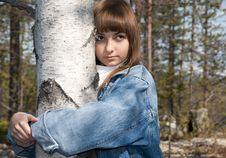 Young Beautiful Girl And Birch Royalty Free Stock Image