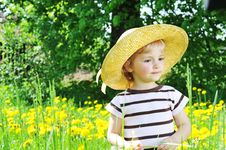 Girl In  Blossoming Field Royalty Free Stock Images