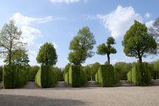 Free Garden Schonbrunn Royalty Free Stock Photos - 14546148