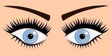 Woman Blue Eyes Stock Image