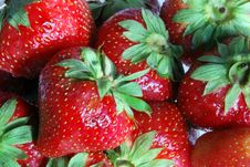 Free Big Strawberries Royalty Free Stock Photos - 14548028
