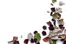 Free Dry Rose Petals Stock Photos - 14549653