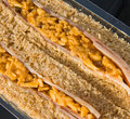 Free Ham, Cheese And Pickle Sandwich. Stock Photography - 14551782