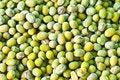 Free Mungo-phaseolus Aureus Beans Royalty Free Stock Image - 14558186