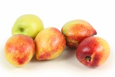 Free Nectarine Royalty Free Stock Photography - 14551627