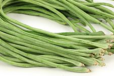 Free Green Bean Royalty Free Stock Photography - 14551637