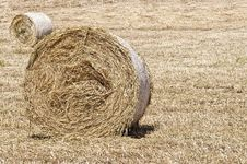 Free Bales Of Hay Royalty Free Stock Photography - 14551707
