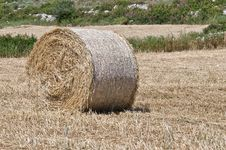 Free Bales Of Hay Royalty Free Stock Photos - 14551798