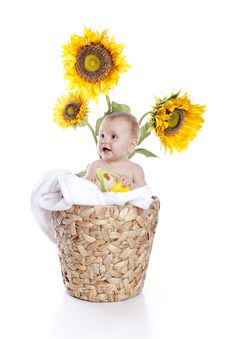 Free Baby Girl In Sunflowers Royalty Free Stock Photo - 14553195