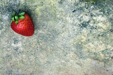 Free Strawberry On Weathered Rock Stock Photos - 14553413