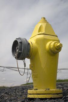 Yellow Fire Hydrant Royalty Free Stock Photos