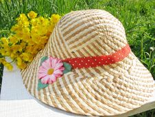Free Summer Accessories Stock Photos - 14555613