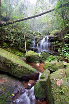 Free Waterfall Stock Photography - 14556912