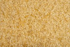Free Rice Kernels Filling The Frame Stock Photography - 14558082