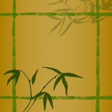 Free Bamboo Branches Royalty Free Stock Photo - 14559495