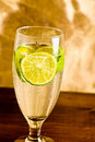 Free Lemonade Stock Photos - 14568663