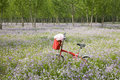 Free Bicycle In Wildflower Field Stock Photography - 14569492