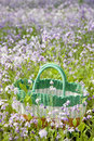 Free Picnic Basket Stock Photography - 14569602