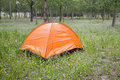 Free Camping Tent Stock Photography - 14569672