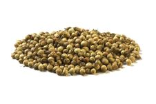 Free Coriander Seeds Stock Photography - 14560582