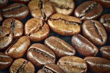 Free Coffee Beans Royalty Free Stock Photos - 14560758