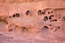 Free Strange Holes In Red Sandstone Stock Images - 14561354