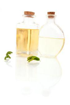 Free Aromatherapy Oils Royalty Free Stock Photos - 14564458