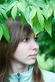 Free Young Woman Under The Leaves Royalty Free Stock Image - 14565096