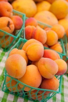 Free Organic Apricots Stock Image - 14566491