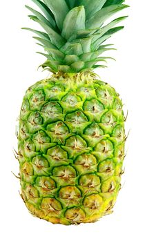 Free Fresh Pineapple Stock Photos - 14566503