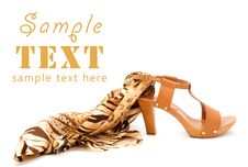 Free Shoes With A Leopard Silk Scarf Stock Photography - 14566722