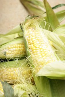 Free Corn On The Cobb Stock Image - 14567381