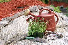 Gardening Still Life Royalty Free Stock Photos