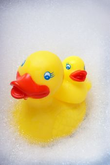 Free Rubber Ducky Stock Images - 14567834
